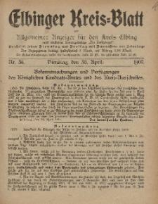 Kreis-Blatt des Königlich Preußischen Landraths-Amtes zu Elbing, Nr. 36 Dienstag 30 April 1907