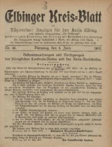 Kreis-Blatt des Königlich Preußischen Landraths-Amtes zu Elbing, Nr. 46 Dienstag 4 Juni 1907