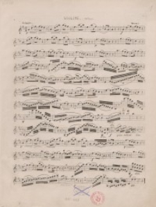 Adagio. Violine solo ; Adagio. Bratsche solo