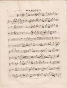 Mein Reichtum : Violoncello