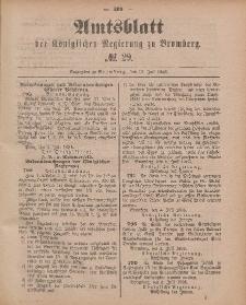 Amtsblatt der Königlichen Preußischen Regierung zu Bromberg, 17. Juli 1885, Nr. 29