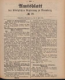 Amtsblatt der Königlichen Preußischen Regierung zu Bromberg, 20. Juli 1888, Nr. 29