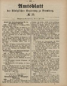Amtsblatt der Königlichen Preußischen Regierung zu Bromberg, 18. Juli 1884, Nr. 29