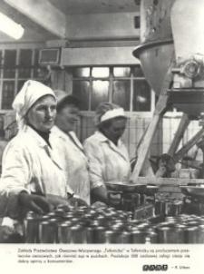 Zakłady Przetwórstwa Owocowo-Warzywnego w Tolkmicku