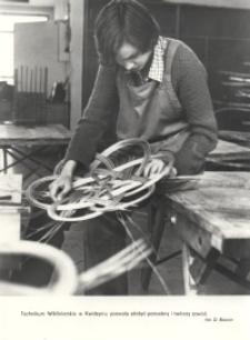 Technikum Przemysłu Wikliniarsko-Trzciniarskiego w Kwidzynie
