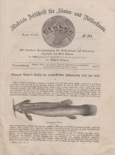 Globus. Illustrierte Zeitschrift für Länder...Bd. XXXII, Nr.20, 1877
