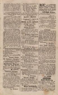 Elbinger Anzeigen, Nr. 67. Sonnabend, 19. August 1854