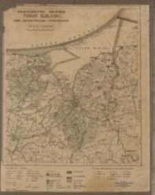 Województwo Gdańskie: Powiat Elbląski: mapa administracyjna i komunikacyjna: skala: 1 : 100 000