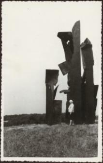 Elbląg: formy przestrzenne – zdjęcie nr 9