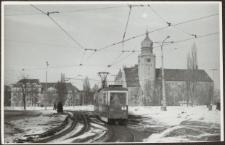 Elbląg – zdjęcie nr 43