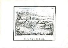 Schloss-Ruine in Frankenstein - odbitka