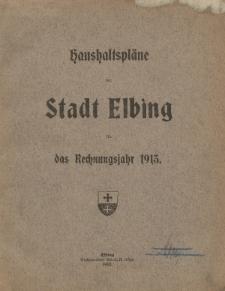 Haushaltspläne der Stadt Elbing fur das Rechnungsjahr 1913