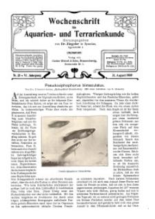 Wochenschrift für Aquarien und Terrarienkunde, 6. Jg. 1909, Nr. 35.