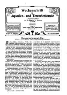 Wochenschrift für Aquarien und Terrarienkunde, 6. Jg. 1909, Nr. 39.