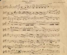 Adagio elegique : Violine