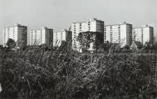 Budownictwo elbląskie (Zatorze) [fotografia]