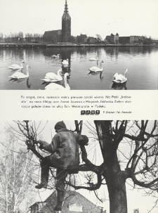Wiosna w obiektywie Miesięcznej Kroniki Fotograficznej