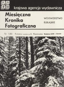 Styczniowy las w śniegu