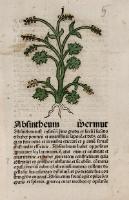 Herbarien in den Sammlungen der Elbinger Bibliothek